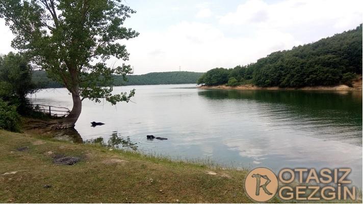 6- Ömerli Barajı Esenceli Kamp Alanı