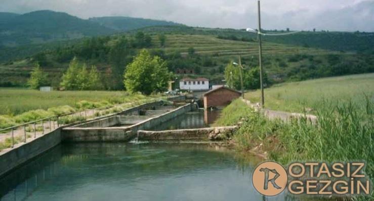 Amasya Ücretsiz Kamp Alanları Belevi Akpınar Mesire Alanı