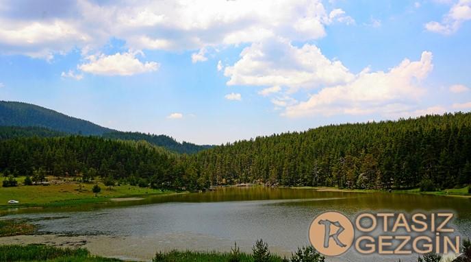 Ankara Egriova Yaylasi Kamp Alani