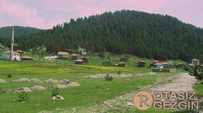 Ankara Kızılcahamam Gebeler Köyü Yaylası Kamp Alanı