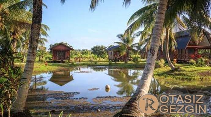 Surinam Nieuw Nickerie Gezilecek Yerler