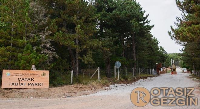 Çorum Çatak Tabiat Parkı Kamp Yeri