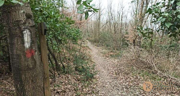 Agva Kilimli Trekking Parkuru Nerede