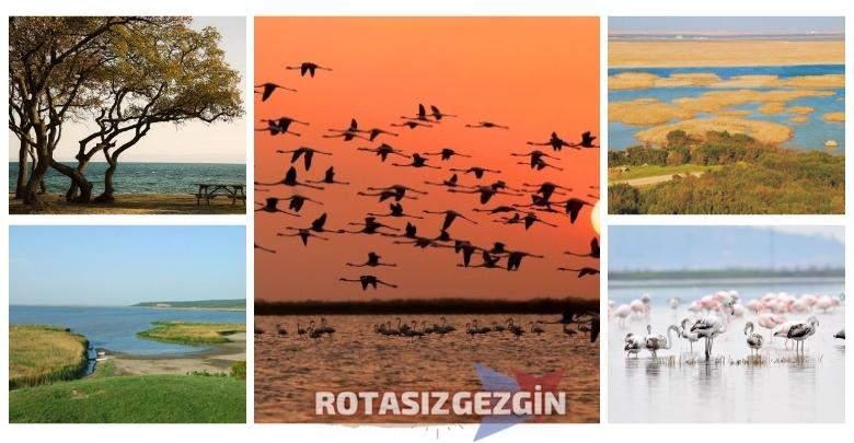 Edirne Gala Golu Milli Parki