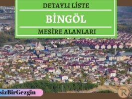 Bingöl Mesire Alanları Listesi - Hangisinde Kamp Yapılır