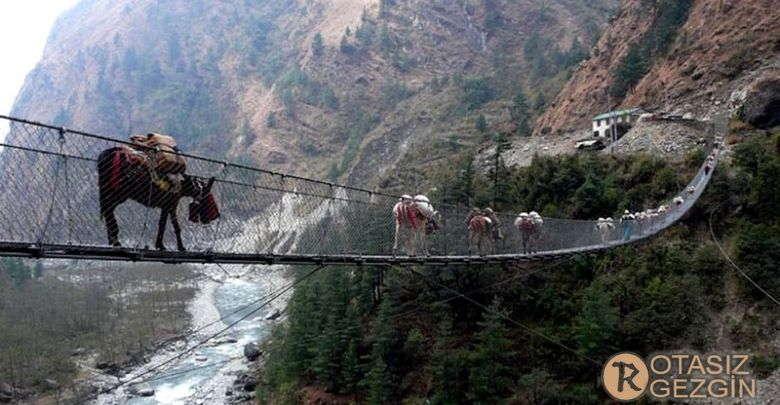 Nepal Ghasa Asma Kopru